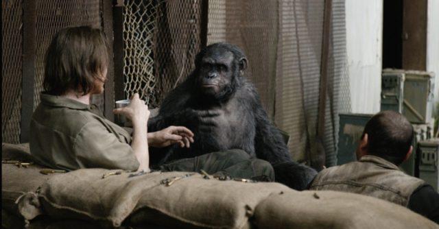 A Cinema City nem tűzi műsorára A majmok bolygója – Forradalom (12) című filmet