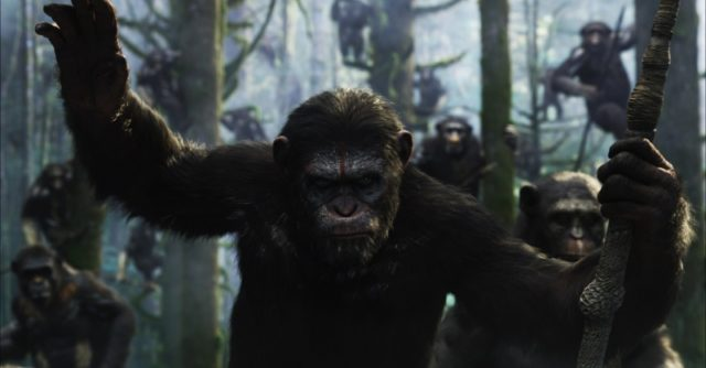 Rekordot dönt a hazai jegypénztáraknál A majmok bolygója – Forradalom