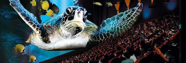 Az IMAX varázslatos világa