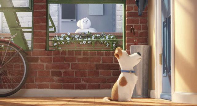 A kis kedvencek titkos élete (The Secret Life of Pets) 2016