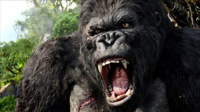 Az új King Kong 100 láb magas lesz