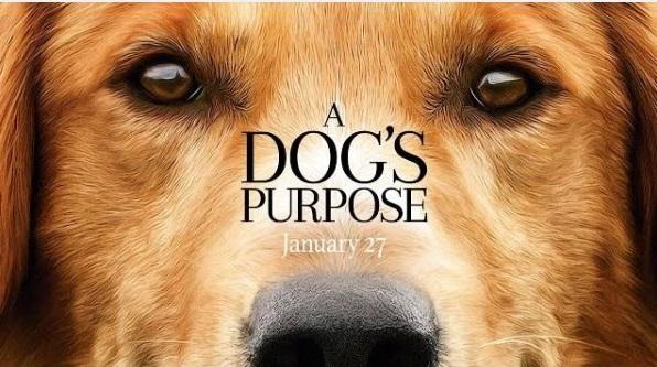 A Dog's Purpose előzetes