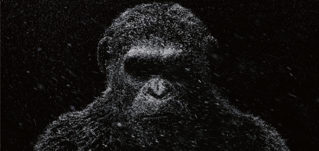 A majmok bolygója - Háború