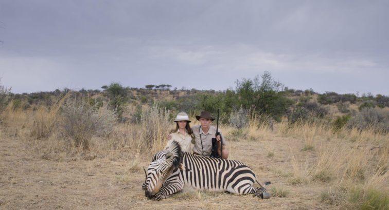 Szafari (Safari) 2016