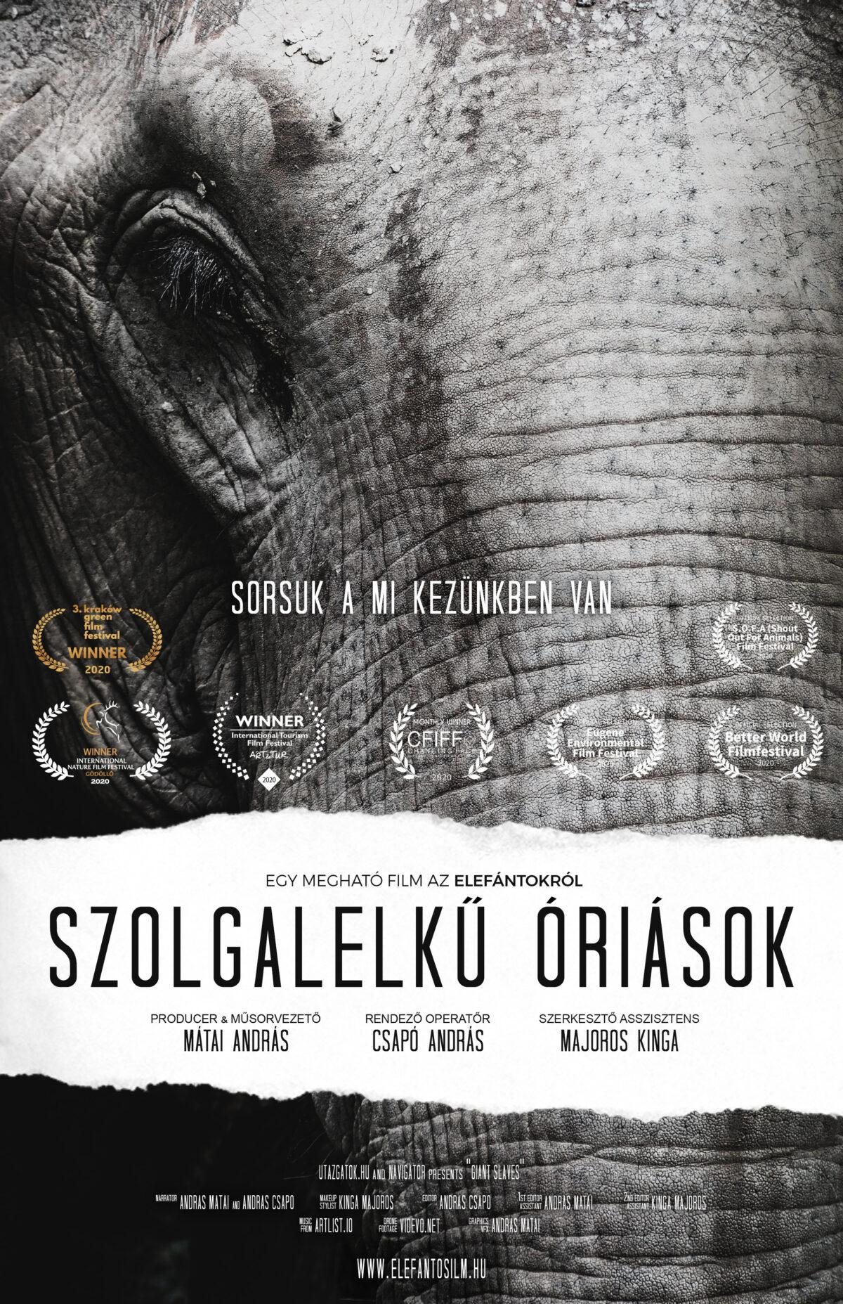 Mi az elefántokkal vagyunk!